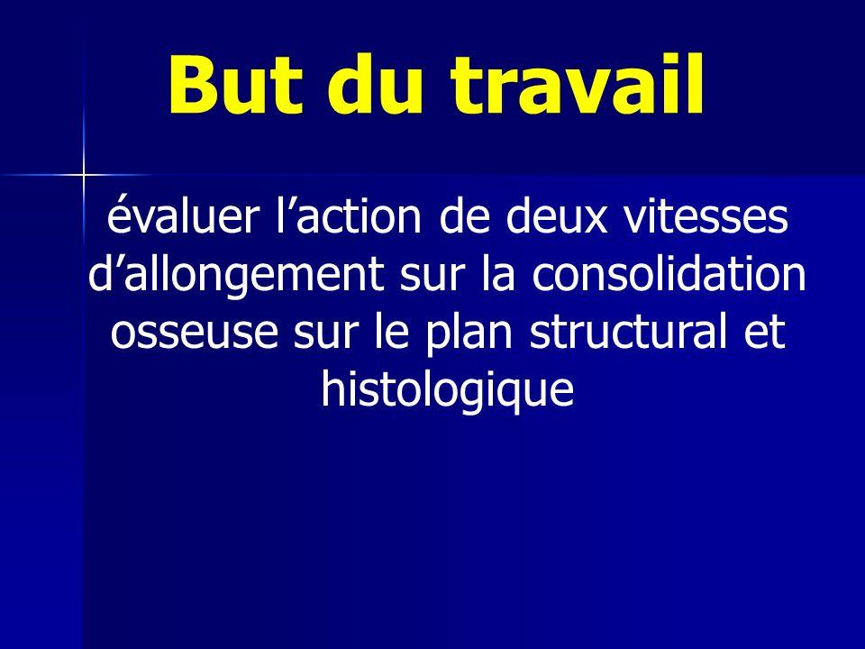 évaluer laction de deux vitesses dallongement sur la consolidation osseuse sur le plan structural et histologique But du travail