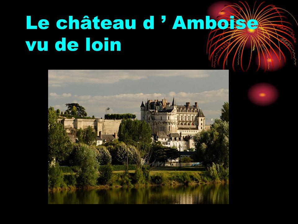 Le château d Amboise vu de loin