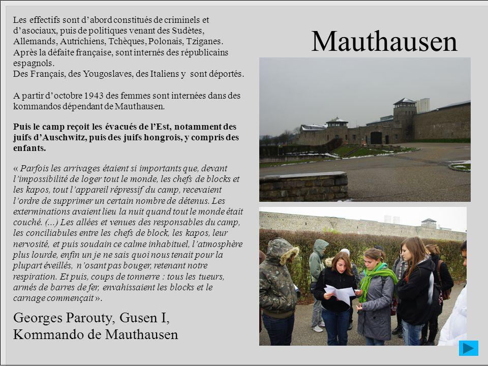 Mauthausen Les effectifs sont dabord constitués de criminels et dasociaux, puis de politiques venant des Sudètes, Allemands, Autrichiens, Tchèques, Po