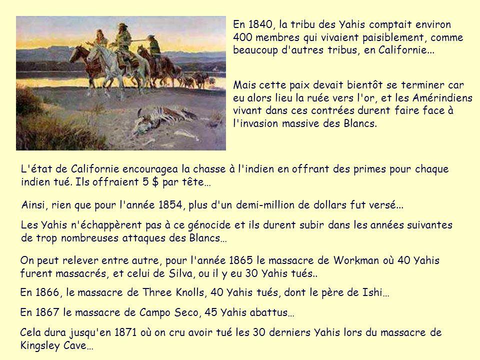 En 1840, la tribu des Yahis comptait environ 400 membres qui vivaient paisiblement, comme beaucoup d autres tribus, en Californie...