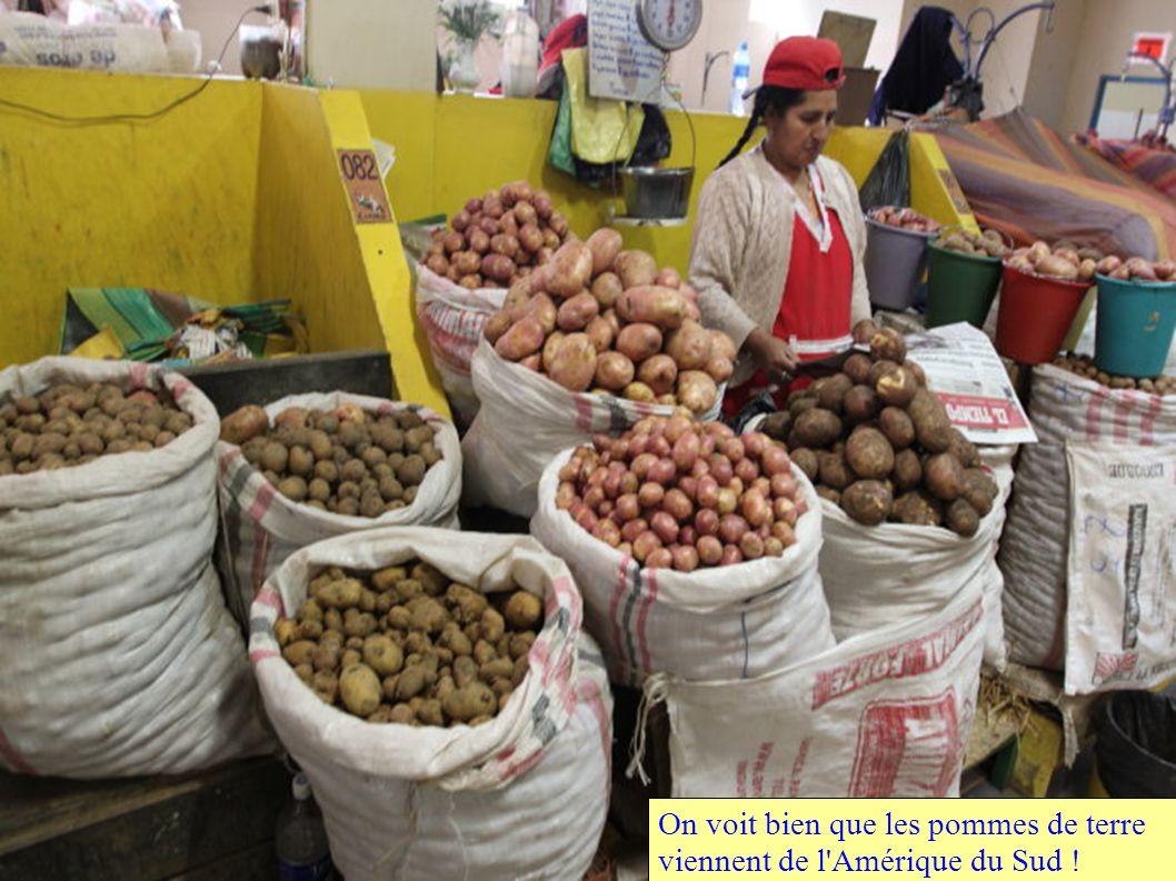 On voit bien que les pommes de terre viennent de l Amérique du Sud !