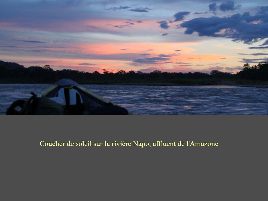 Coucher de soleil sur la rivière Napo, affluent de l Amazone