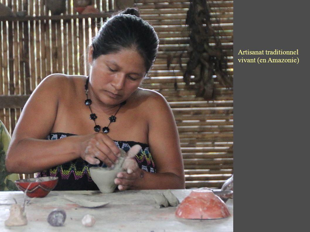 Artisanat traditionnel vivant (en Amazonie)