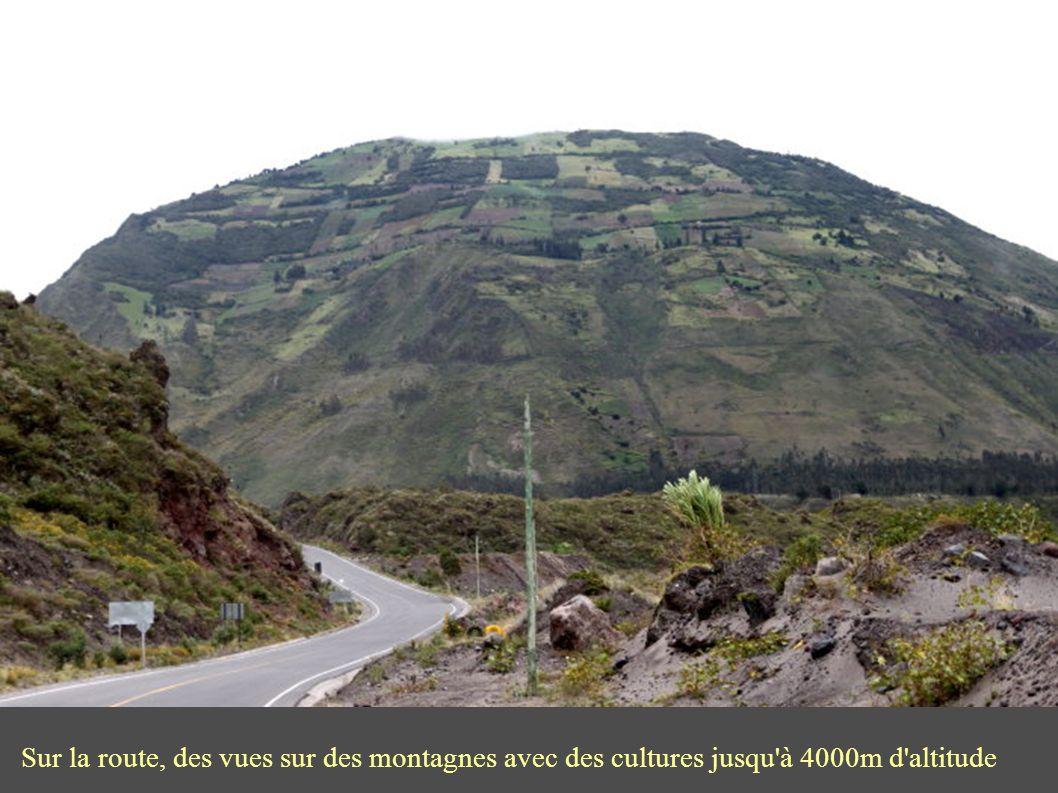 Sur la route, des vues sur des montagnes avec des cultures jusqu à 4000m d altitude