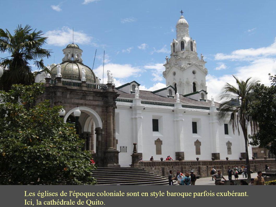 Les squares en centre ville sont des parcs fleuris et très agréables pour se promener ou se prélasser : devant la cathédrale de Quito au centre de Cotacachi.