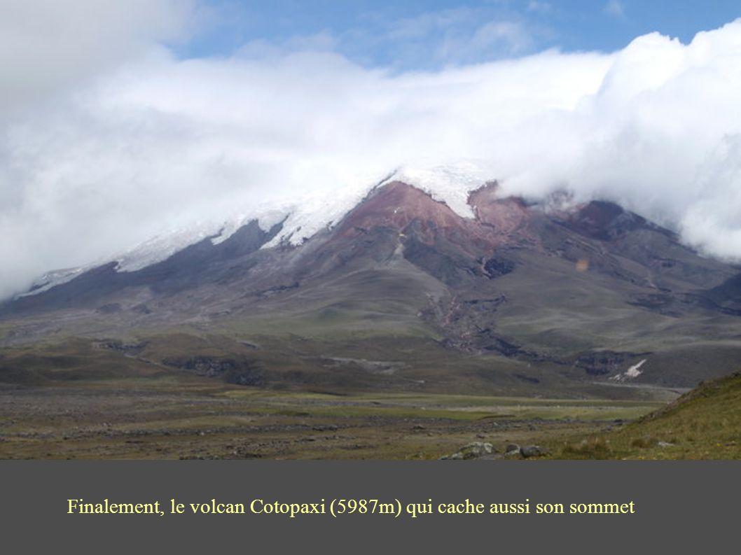 Finalement, le volcan Cotopaxi (5987m) qui cache aussi son sommet