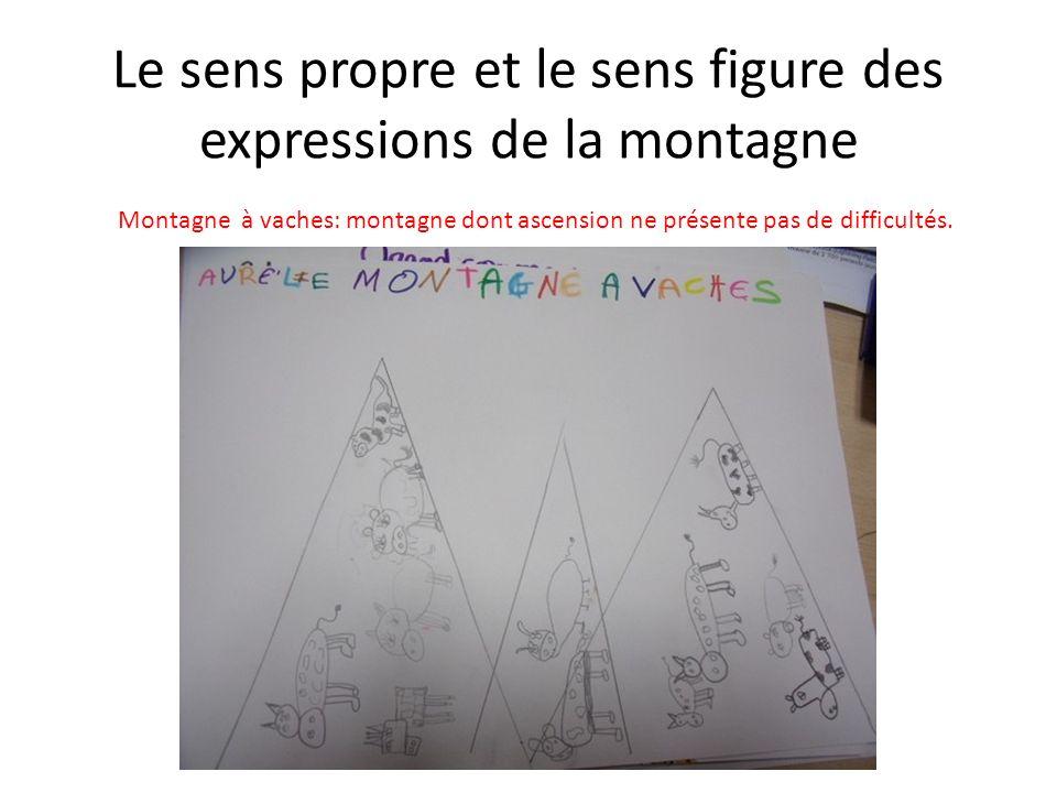 Le sens propre et le sens figure des expressions de la montagne Une montagne de livres: beaucoup de livres.
