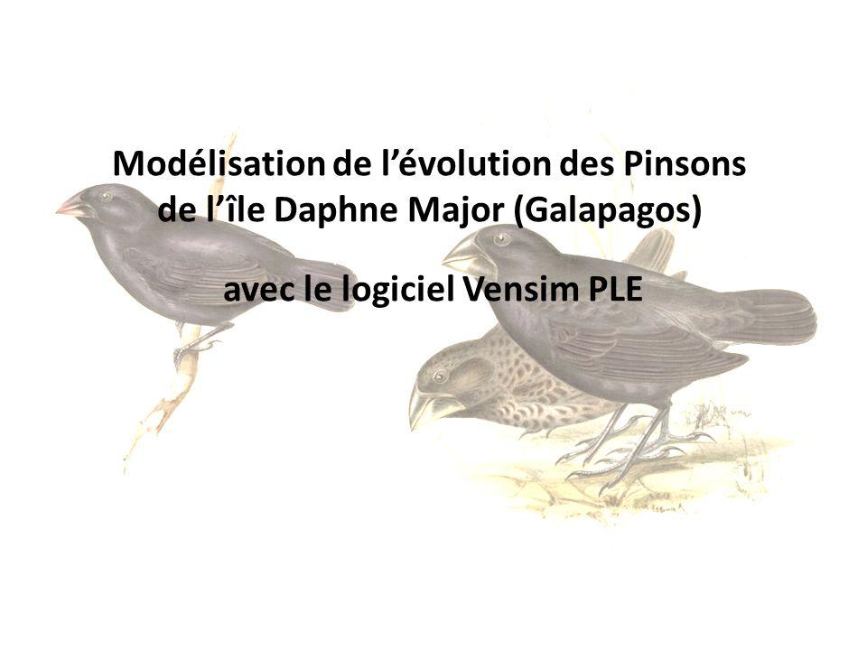 Modélisation de lévolution des Pinsons de lîle Daphne Major (Galapagos) avec le logiciel Vensim PLE