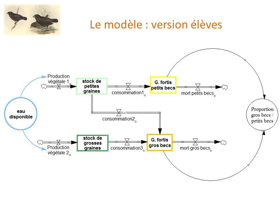 Le modèle : version élèves