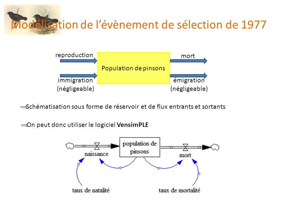 Le modèle : version élèves (2) Fichier : PinsonsGalapagos2004-magnirostris.mdl