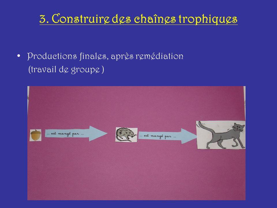3. Construire des chaînes trophiques Productions finales, après remédiation (travail de groupe )