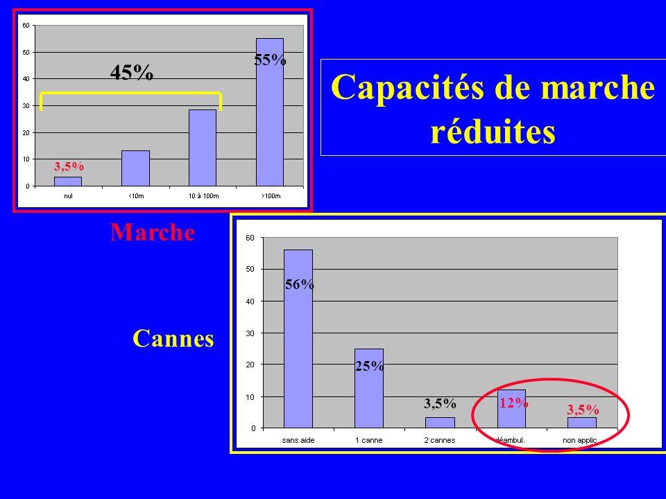 Capacités cognitives diminuées 65% 24% 11% 35%