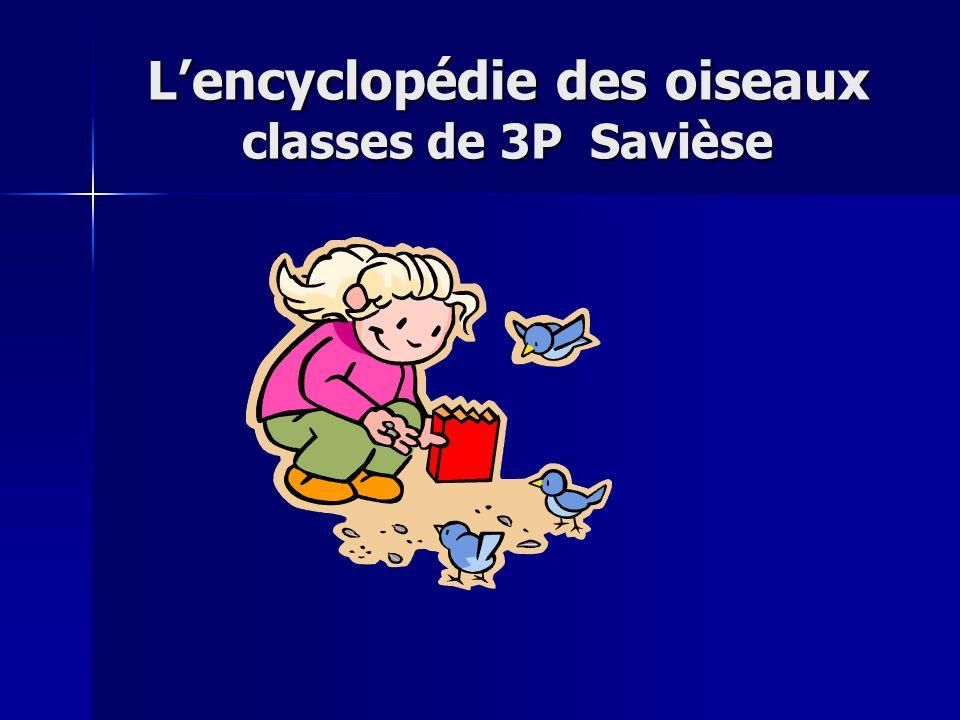 Lencyclopédie des oiseaux classes de 3P Savièse