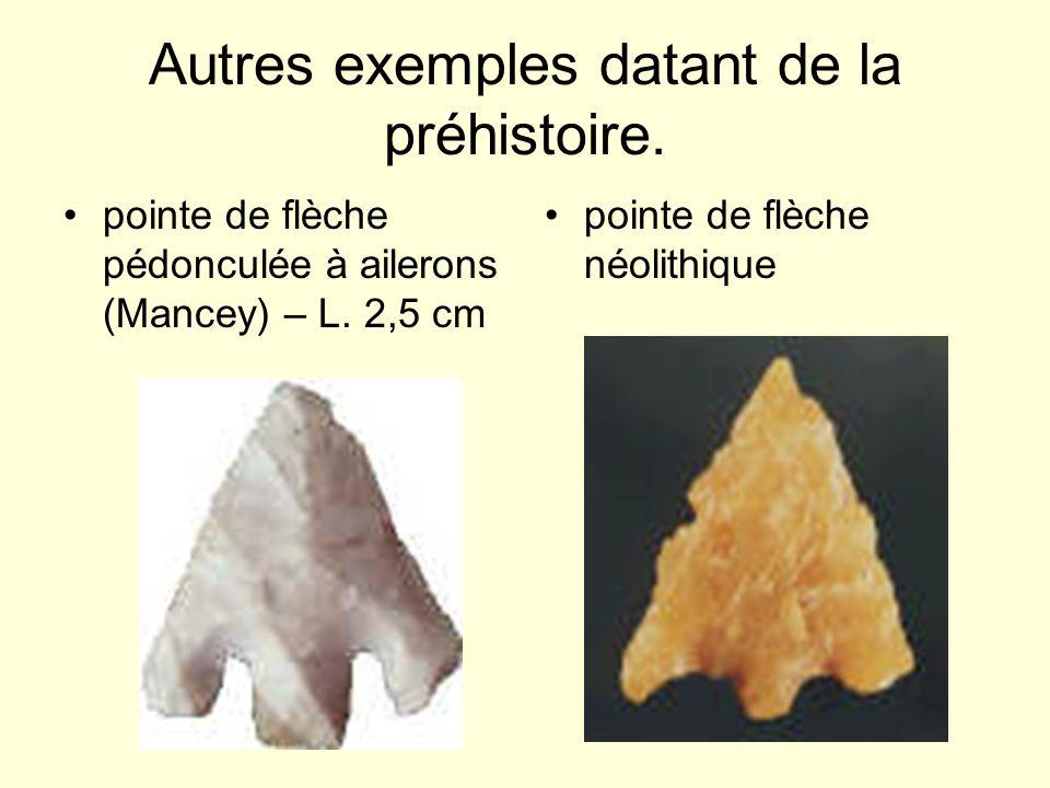 Autres exemples datant de la préhistoire. pointe de flèche pédonculée à ailerons (Mancey) – L. 2,5 cm pointe de flèche néolithique