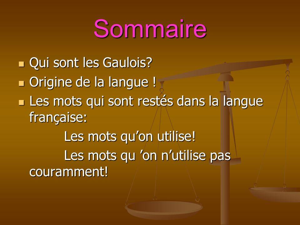 Sommaire Qui sont les Gaulois. Qui sont les Gaulois.