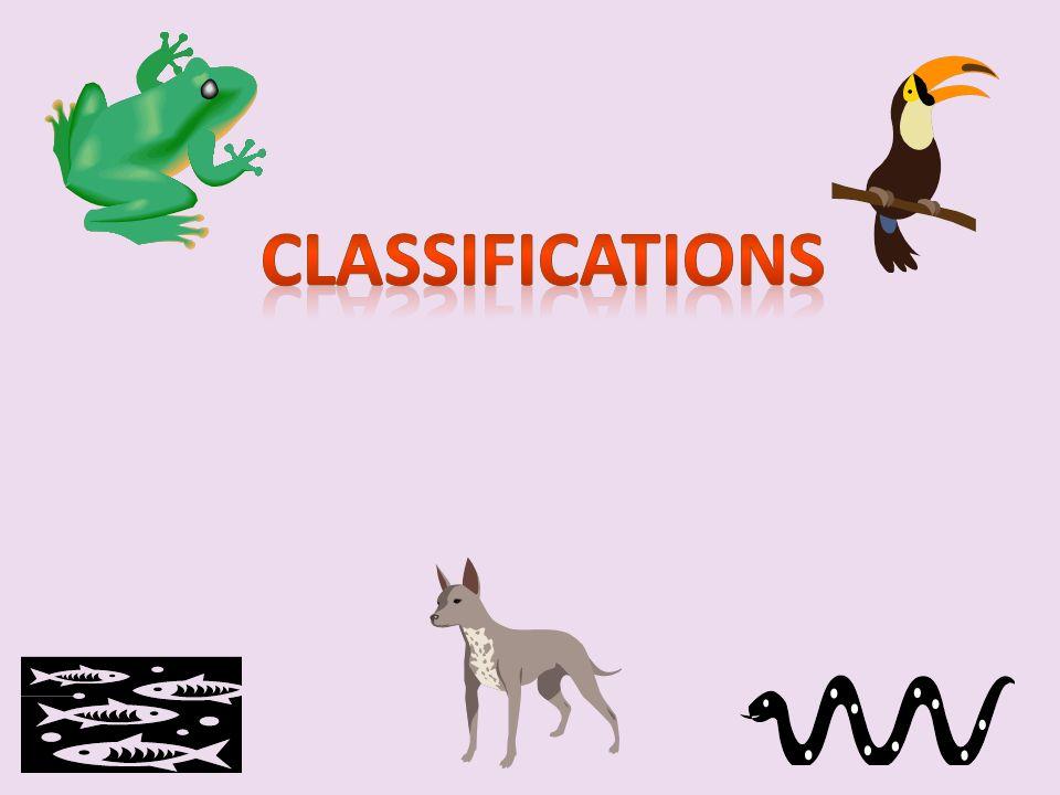 Les classifications