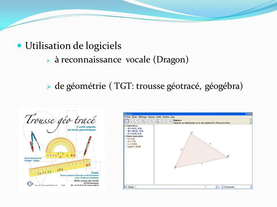 Utilisation de logiciels à reconnaissance vocale (Dragon) de géométrie ( TGT: trousse géotracé, géogébra)
