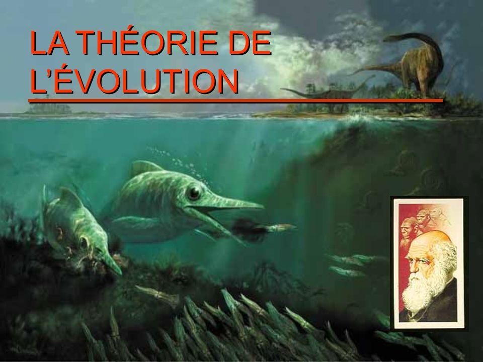 1.Avant Darwin 1.1 Historique de lidée d évolution 1.