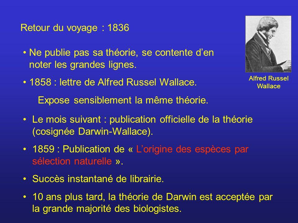 Retour du voyage : 1836 Ne publie pas sa théorie, se contente den noter les grandes lignes. 1858 : lettre de Alfred Russel Wallace. Expose sensiblemen