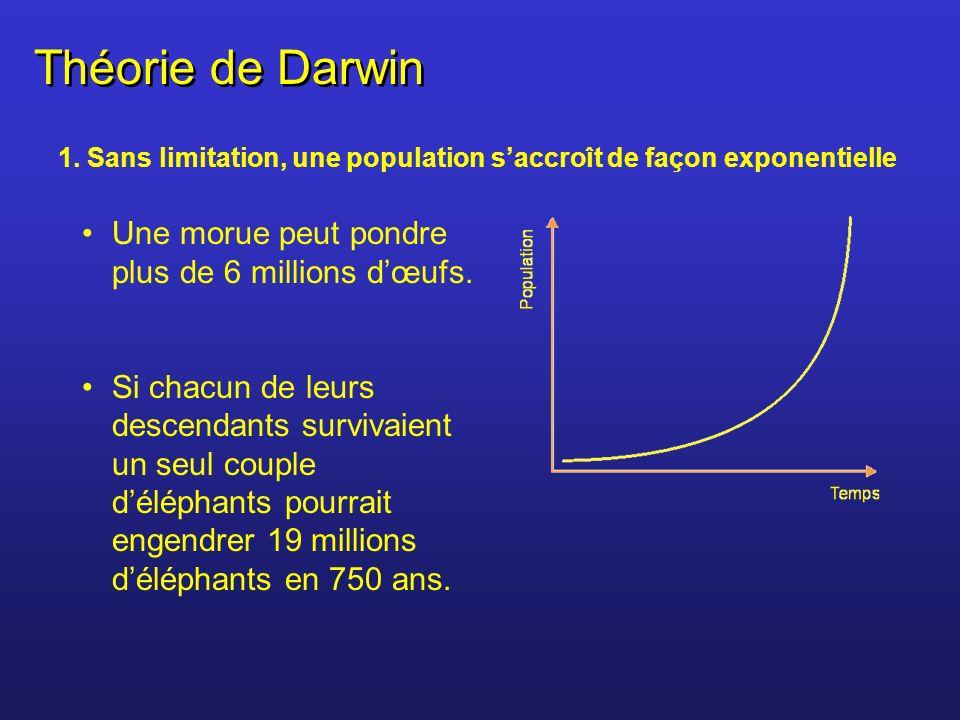 Théorie de Darwin 1. Sans limitation, une population saccroît de façon exponentielle Une morue peut pondre plus de 6 millions dœufs. Si chacun de leur
