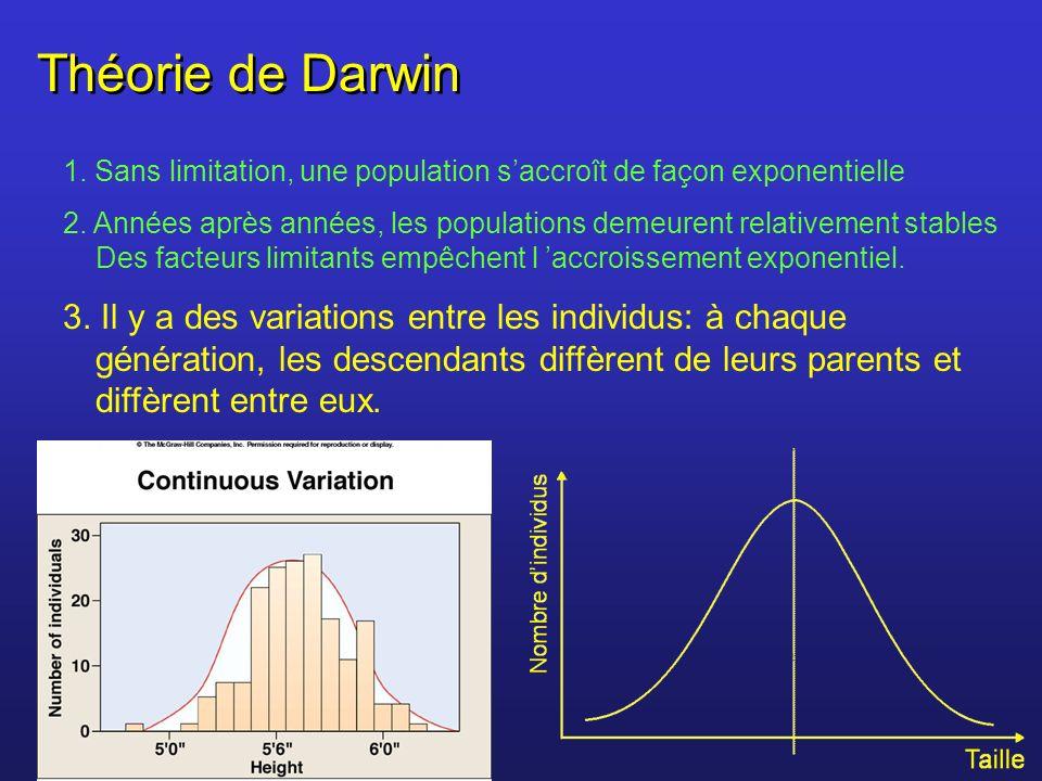 Théorie de Darwin 1. Sans limitation, une population saccroît de façon exponentielle 2. Années après années, les populations demeurent relativement st