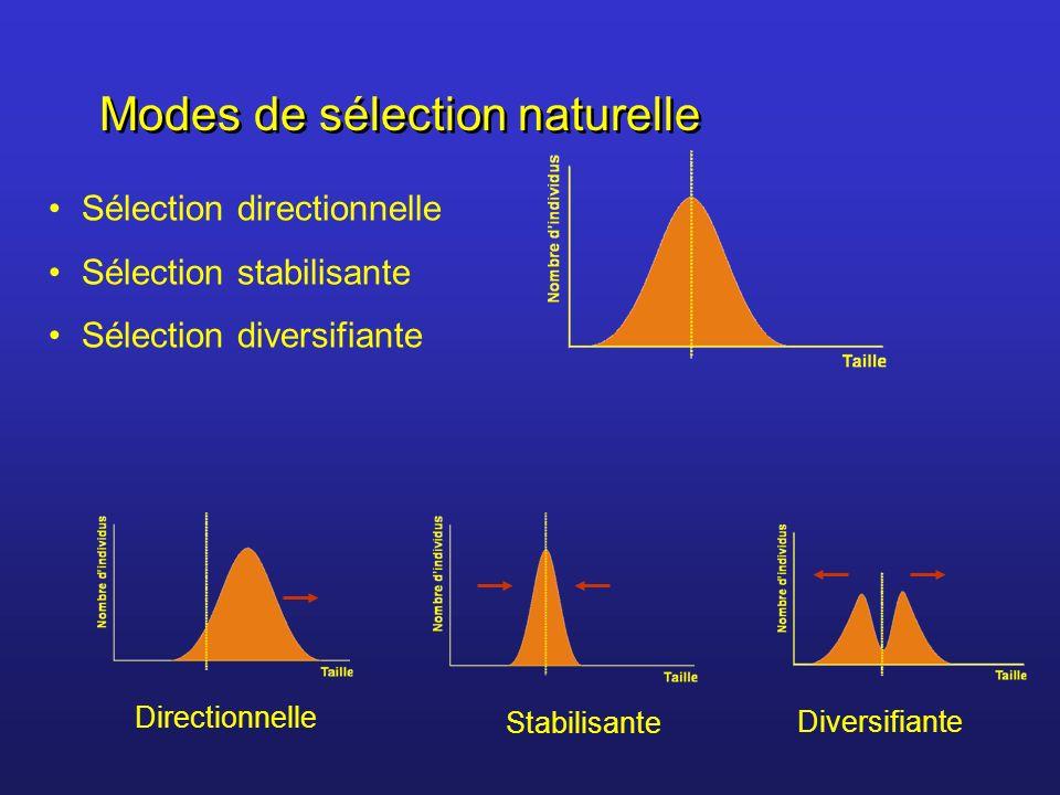 Modes de sélection naturelle Sélection directionnelle Sélection stabilisante Sélection diversifiante Stabilisante Directionnelle Diversifiante