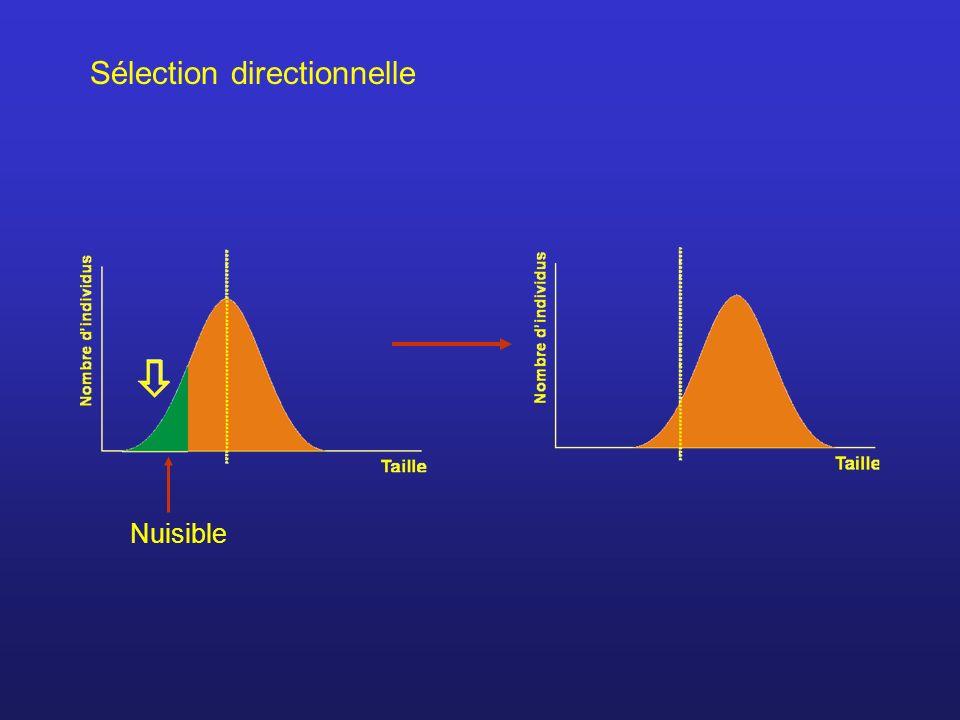 Sélection directionnelle Nuisible