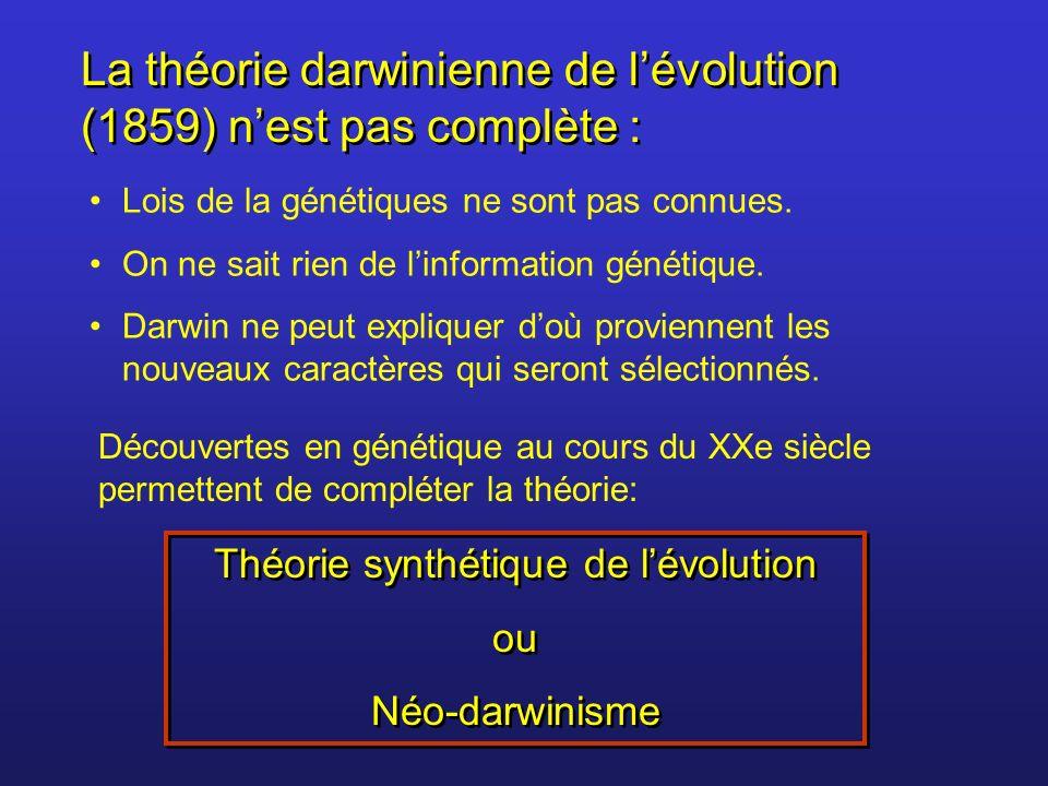 La théorie darwinienne de lévolution (1859) nest pas complète : Lois de la génétiques ne sont pas connues. On ne sait rien de linformation génétique.