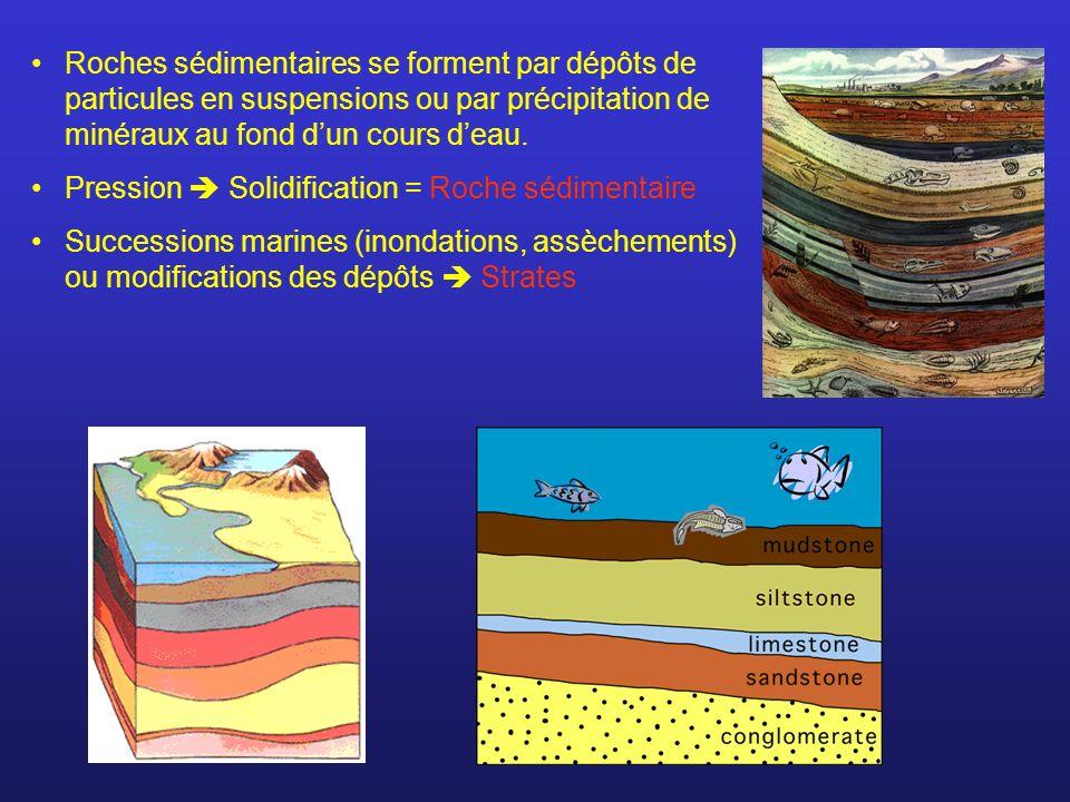 Roches sédimentaires se forment par dépôts de particules en suspensions ou par précipitation de minéraux au fond dun cours deau. Pression Solidificati