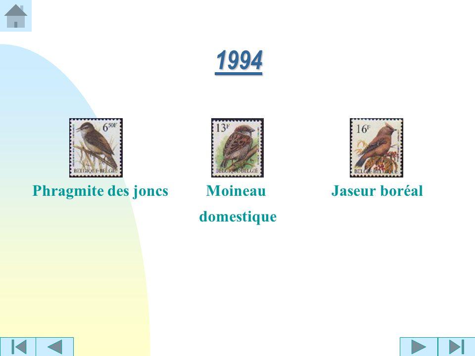 Geai des chênes 1993