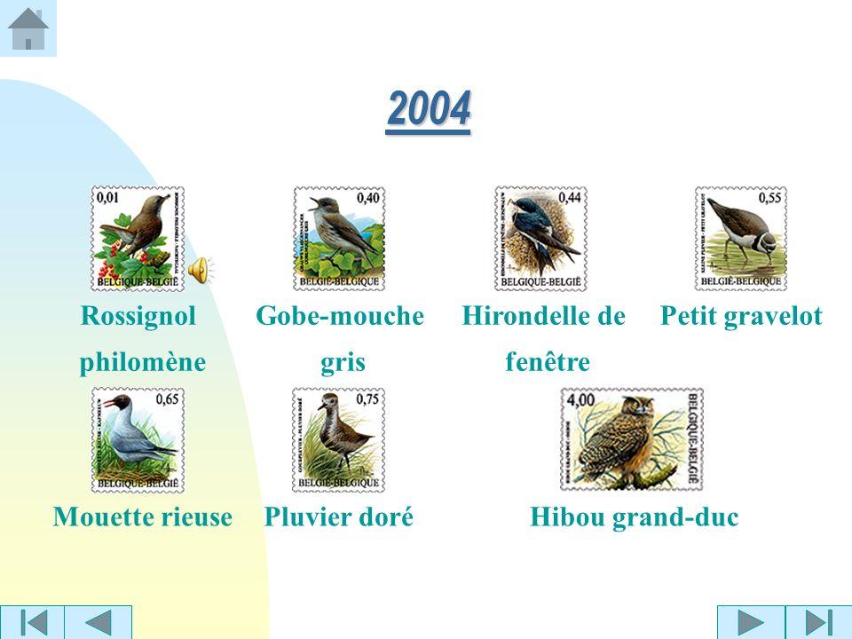2003 Pic épeicheBécassine des marais Huppe fasciéePoule deau
