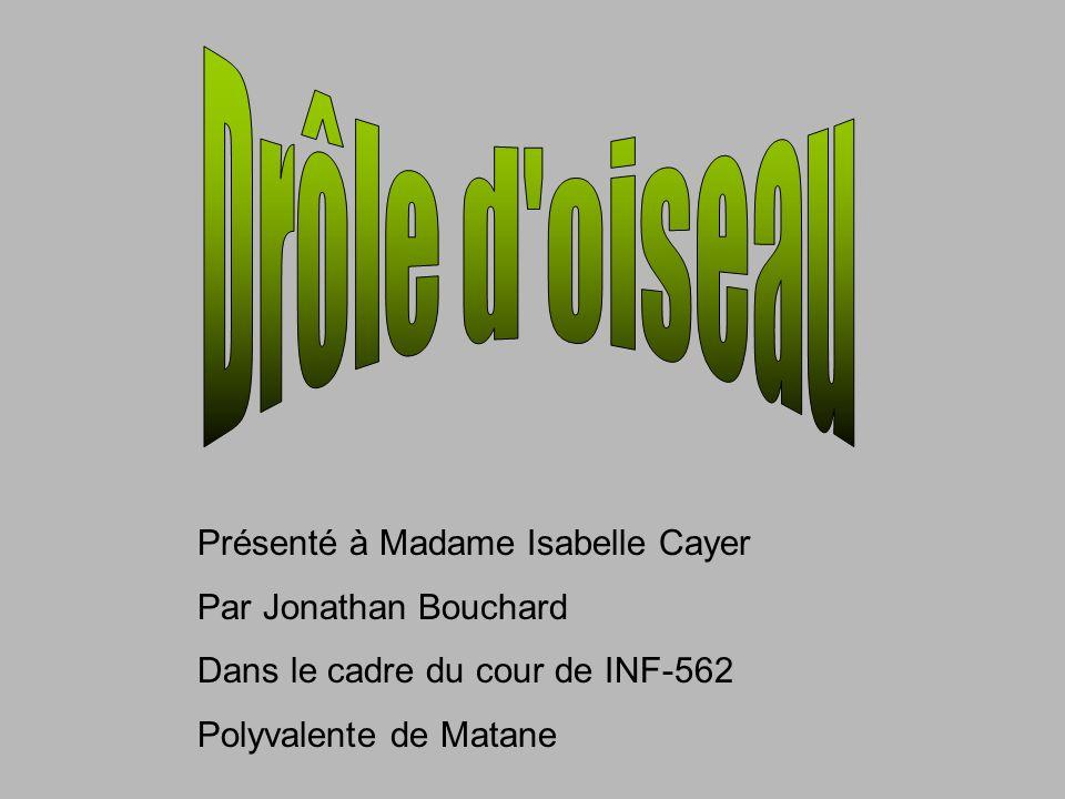 Présenté à Madame Isabelle Cayer Par Jonathan Bouchard Dans le cadre du cour de INF-562 Polyvalente de Matane