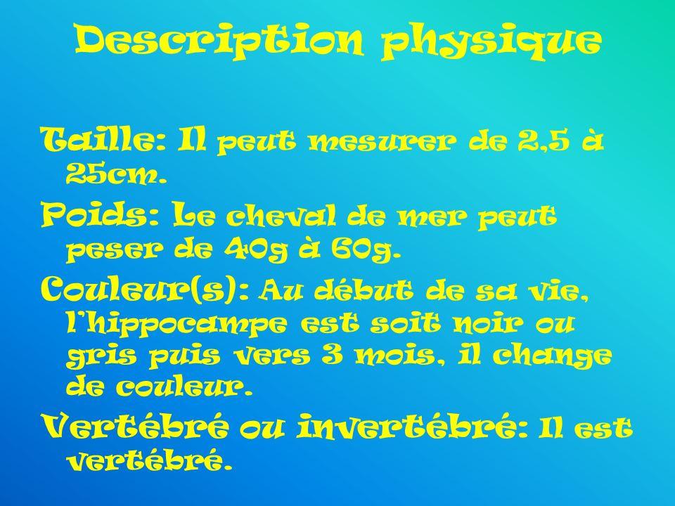 Description physique Taille: Il peut mesurer de 2,5 à 25cm. Poids: L e cheval de mer peut peser de 40g à 60g. Couleur(s): Au début de sa vie, lhippoca