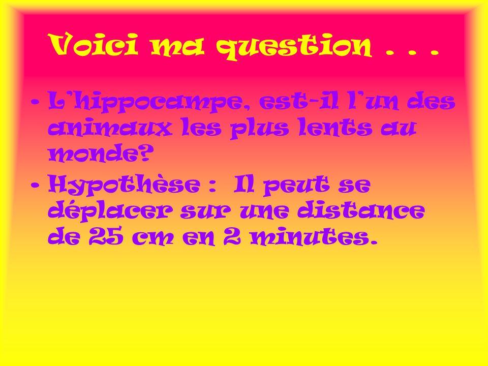 Voici ma question... Lhippocampe, est-il lun des animaux les plus lents au monde? Hypothèse : Il peut se déplacer sur une distance de 25 cm en 2 minut