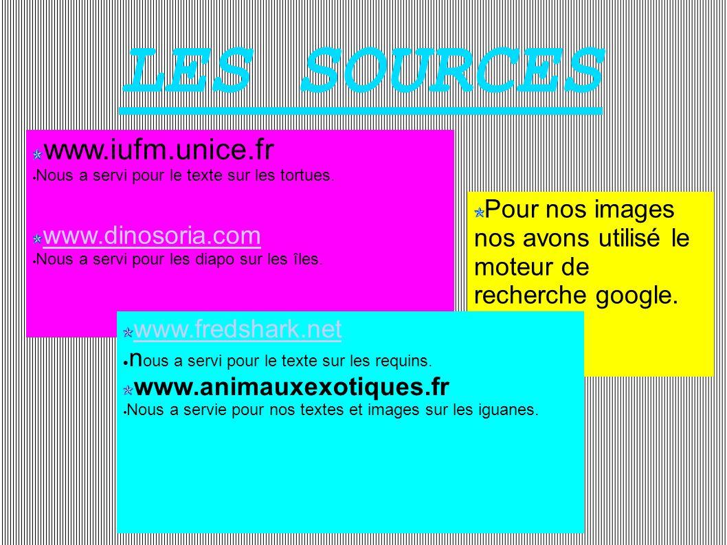Pour nos images nos avons utilisé le moteur de recherche google. www.iufm.unice.fr Nous a servi pour le texte sur les tortues. www.dinosoria.com Nous