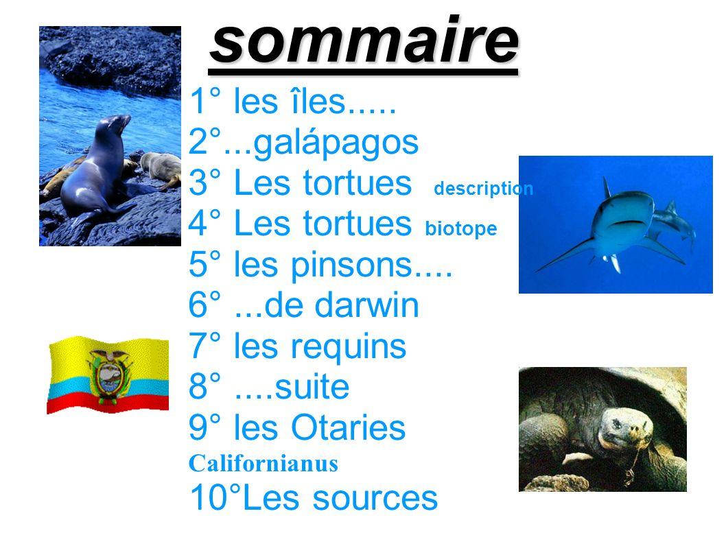 sommaire 1° les îles..... 2°...galápagos 3° Les tortues description 4° Les tortues biotope 5° les pinsons.... 6°...de darwin 7° les requins 8°....suit