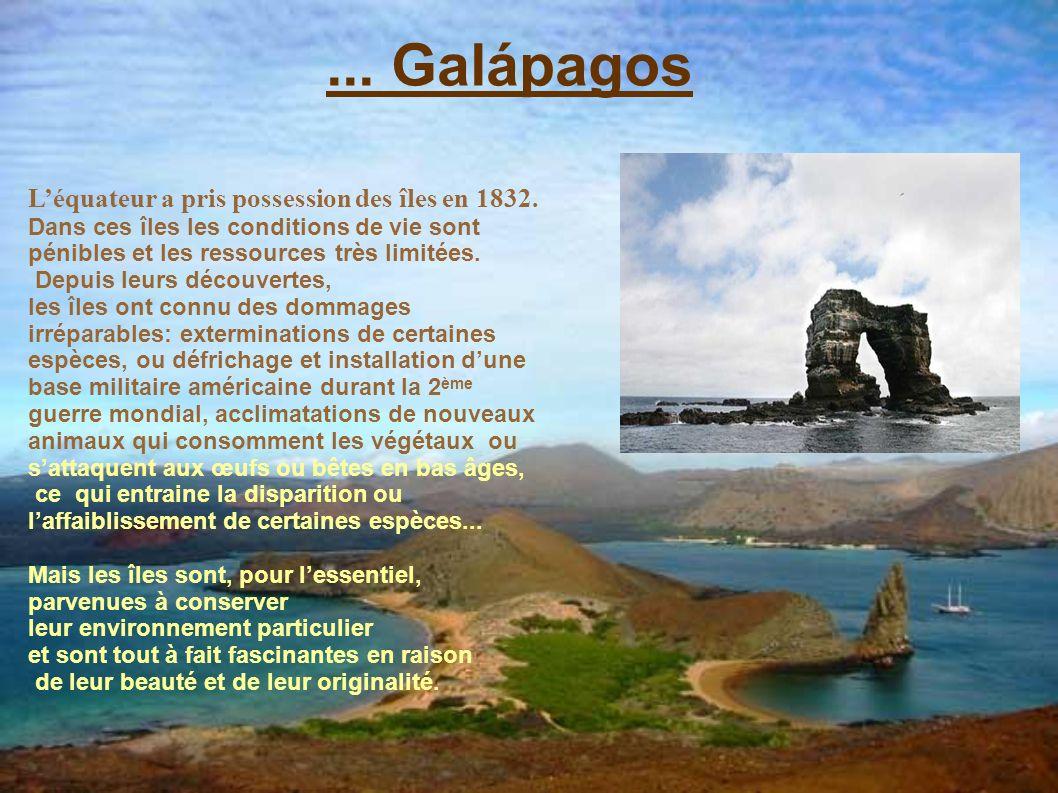 ... Galápagos Léquateur a pris possession des îles en 1832. Dans ces îles les conditions de vie sont pénibles et les ressources très limitées. Depuis