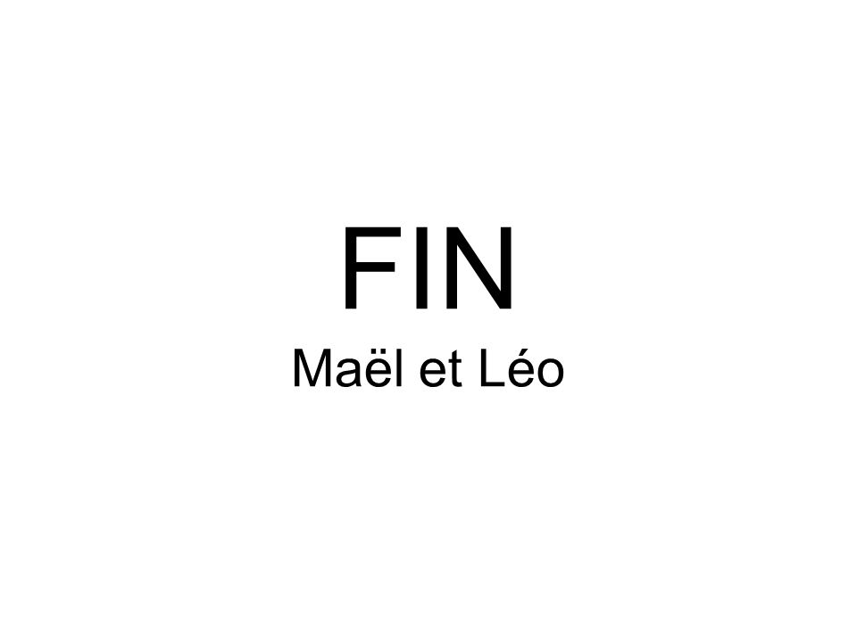 FIN Maël et Léo