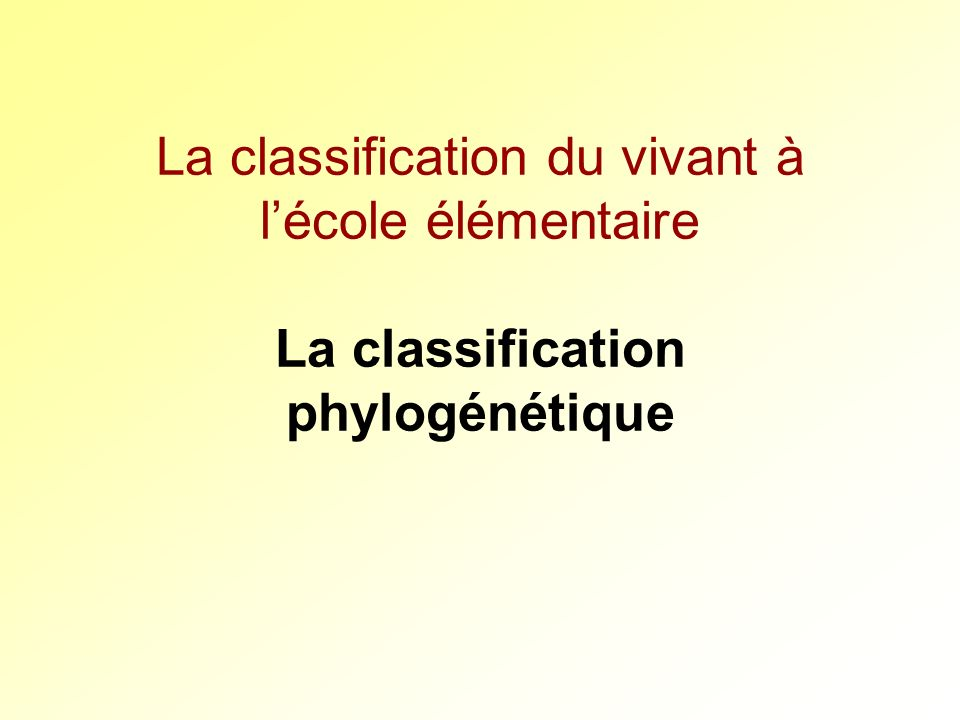 La classification du vivant à lécole élémentaire La classification phylogénétique