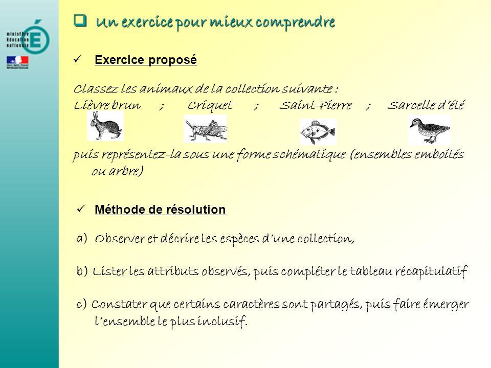 U Un exercice pour mieux comprendre Exercice proposé Classez les animaux de la collection suivante : Lièvre brun ; Criquet ; Saint-Pierre ; Sarcelle d