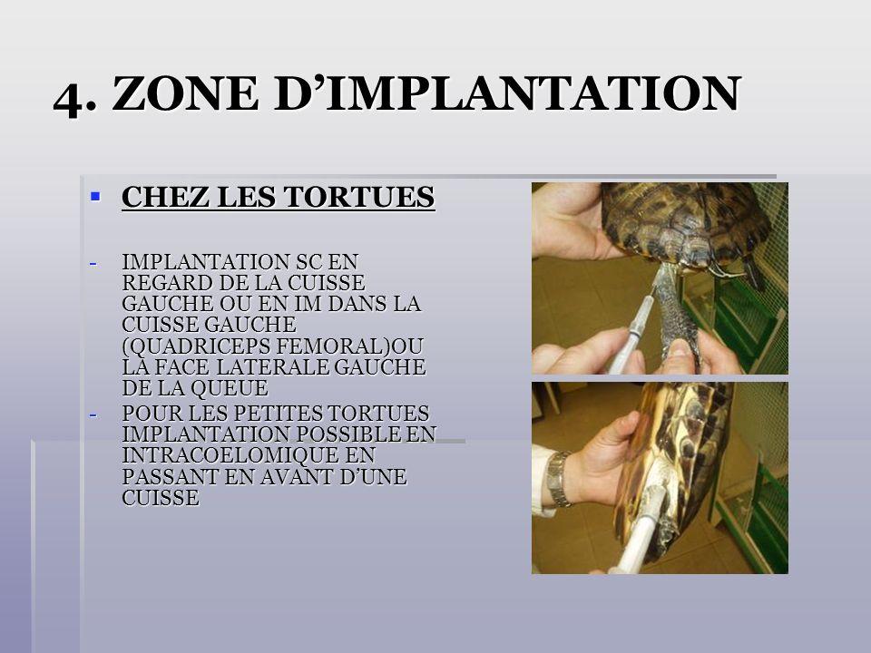 4. ZONE DIMPLANTATION CHEZ LES TORTUES CHEZ LES TORTUES -IMPLANTATION SC EN REGARD DE LA CUISSE GAUCHE OU EN IM DANS LA CUISSE GAUCHE (QUADRICEPS FEMO