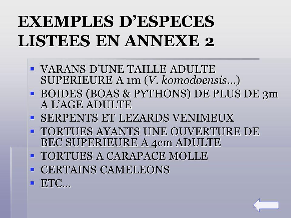 EXEMPLES DESPECES LISTEES EN ANNEXE 2 VARANS DUNE TAILLE ADULTE SUPERIEURE A 1m (V. komodoensis…) VARANS DUNE TAILLE ADULTE SUPERIEURE A 1m (V. komodo