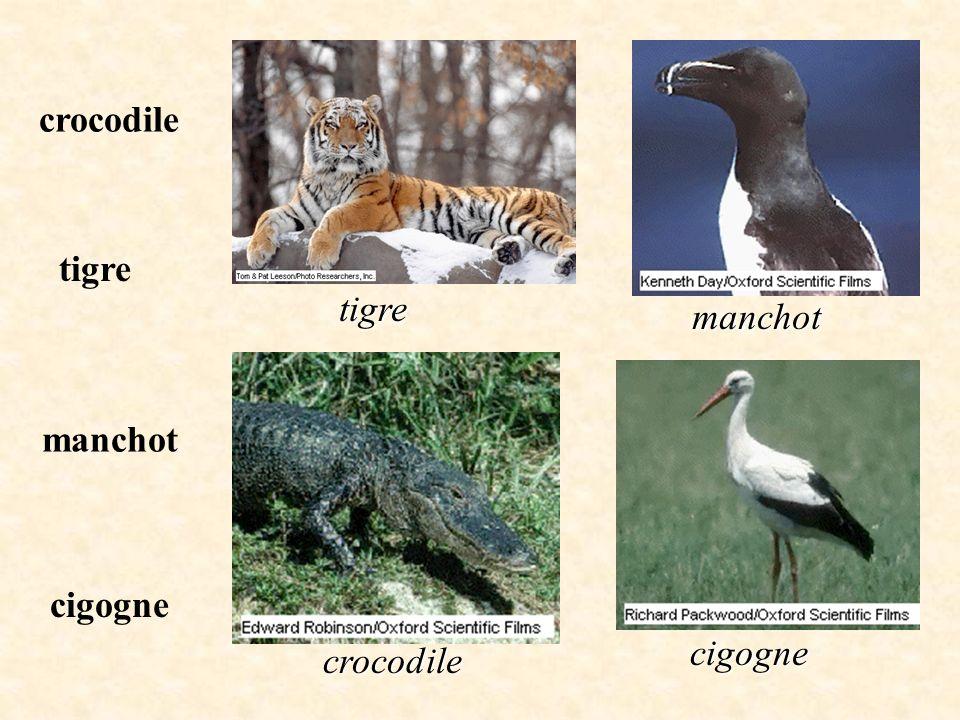 Vous devez associer le nom de chaque animal avec sa photographie