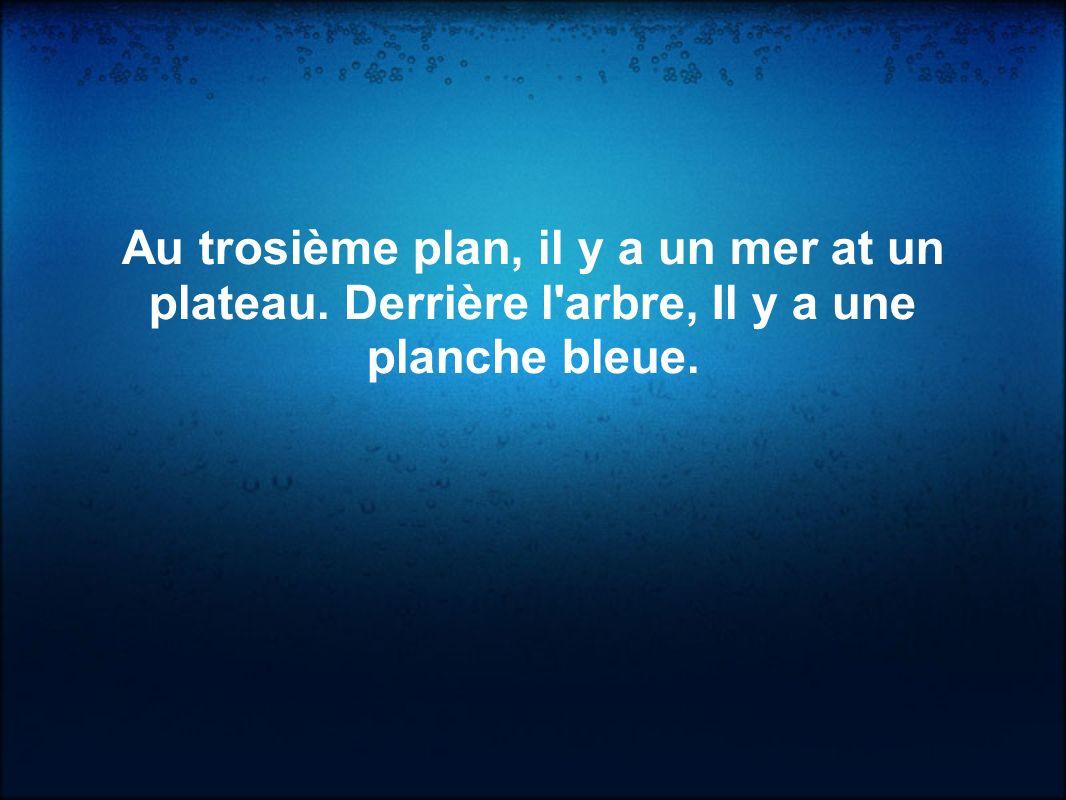 Au trosième plan, il y a un mer at un plateau. Derrière l'arbre, Il y a une planche bleue.