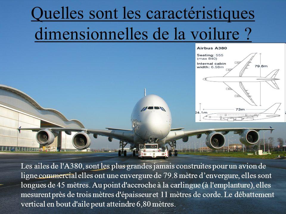 3 Les ailes de l'A380, sont les plus grandes jamais construites pour un avion de ligne commercial elles ont une envergure de 79.8 mètre denvergure, el