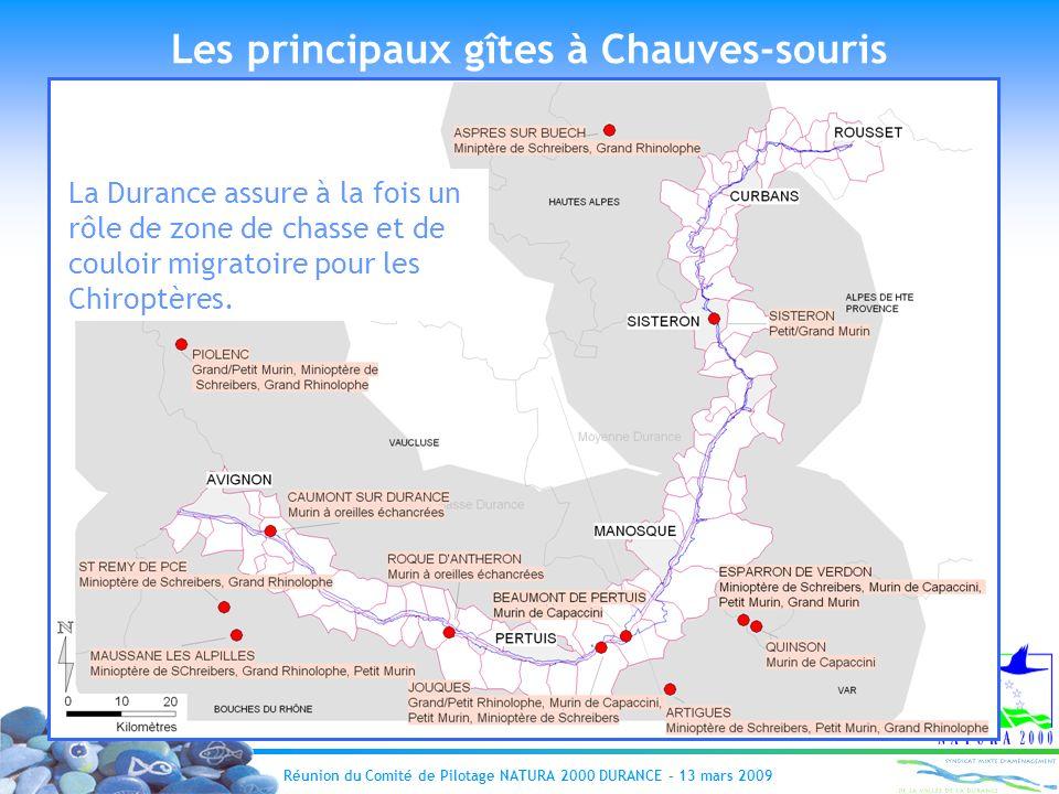 Réunion du Comité de Pilotage NATURA 2000 DURANCE – 13 mars 2009 Les principaux gîtes à Chauves-souris La Durance assure à la fois un rôle de zone de