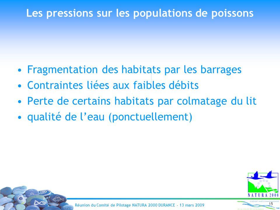 Réunion du Comité de Pilotage NATURA 2000 DURANCE – 13 mars 2009 15 Les pressions sur les populations de poissons Fragmentation des habitats par les b