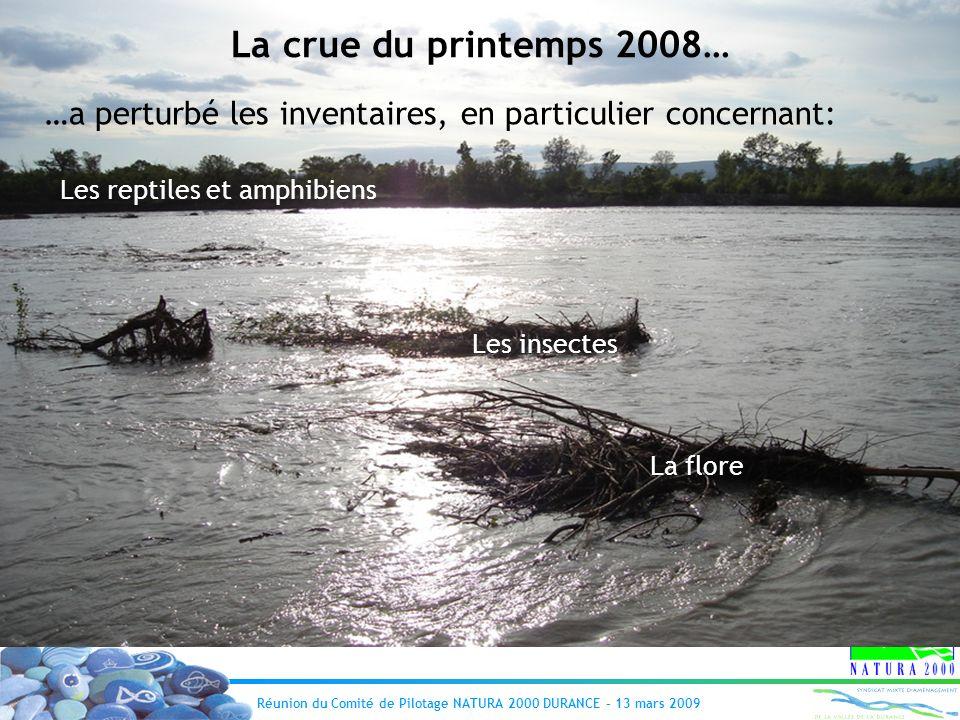 Réunion du Comité de Pilotage NATURA 2000 DURANCE – 13 mars 2009 La crue du printemps 2008… …a perturbé les inventaires, en particulier concernant: Le