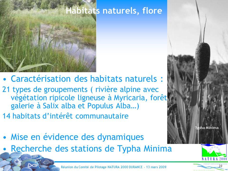 Réunion du Comité de Pilotage NATURA 2000 DURANCE – 13 mars 2009 20 Habitats naturels, flore Caractérisation des habitats naturels : 21 types de group
