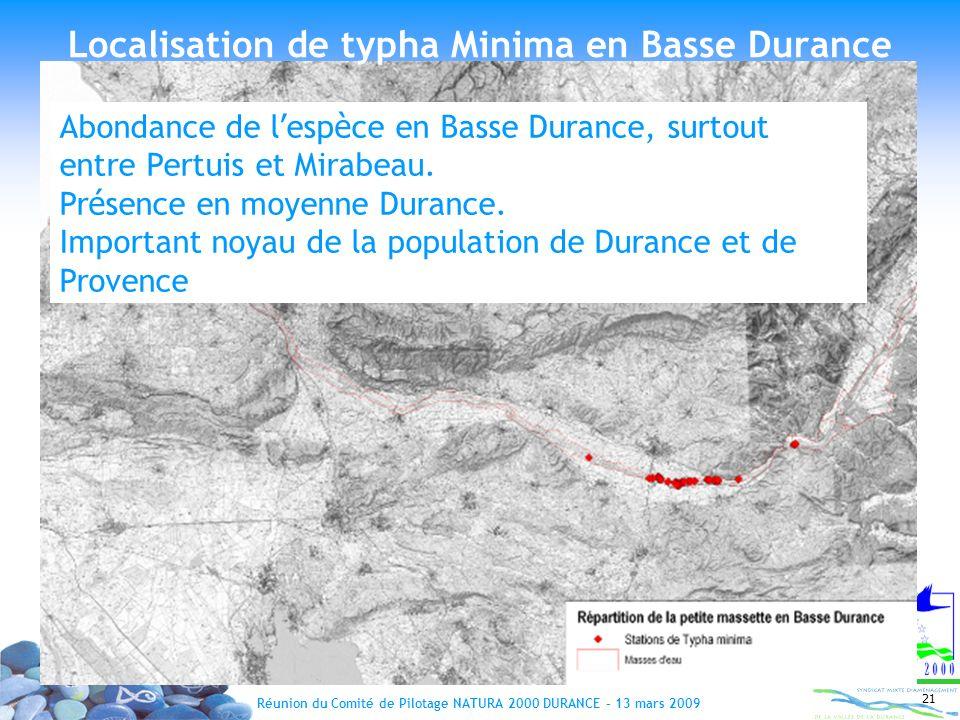 Réunion du Comité de Pilotage NATURA 2000 DURANCE – 13 mars 2009 21 Abondance de l esp è ce en Basse Durance, surtout entre Pertuis et Mirabeau. Pr é